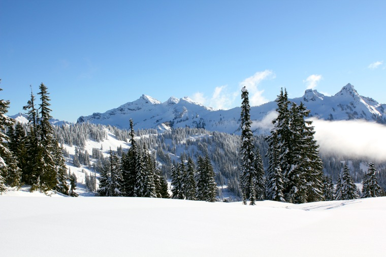 Mt.Rainier-01